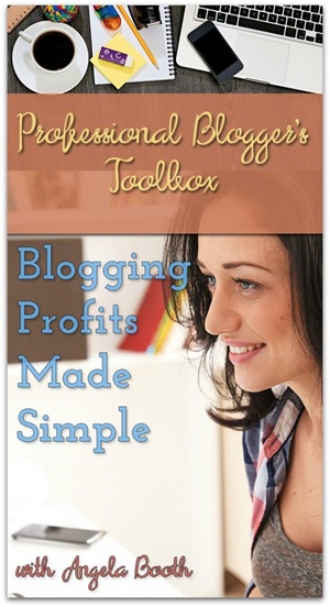 Professional Blogger's Toolbox: Blogging Profits Made Simple