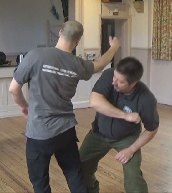 Systema Concepts