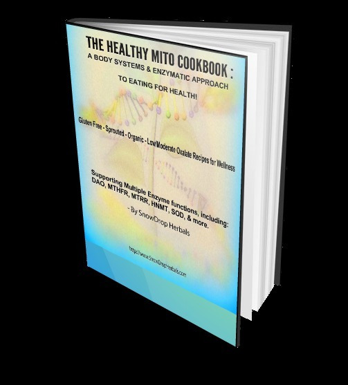 The Healthy Mito Cookbook by SnowDrop Herbals Digital Download